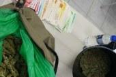 פלילים: עסקי סמים בטלגרם, 'נהגת' בת 13 בלבד וסיפור קצר על תיק