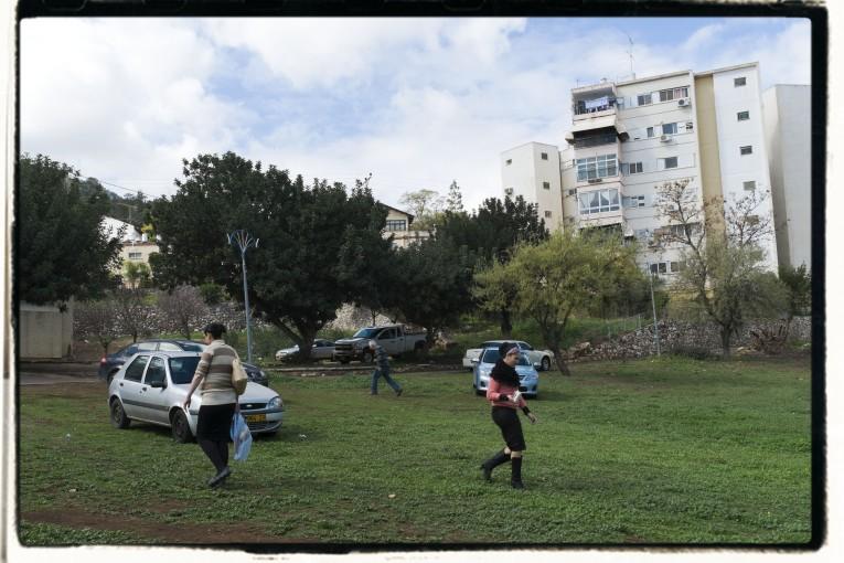 תמונת השבוע: הדשא הגדול  ארז בן סימון