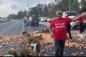 """החקלאים מפגינים נגד הרפורמה המתוכננת: """"האוצר מפחד מרשתות השיווק"""""""